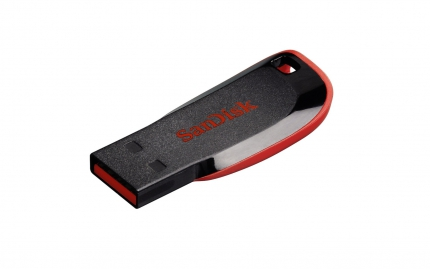USB-флешка Sandisk 16Gb Cruzer Blade SDCZ50-016G-B35, USB2.0, черный